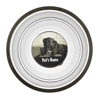Custom Personalized Name Color Photo Pet Bowl