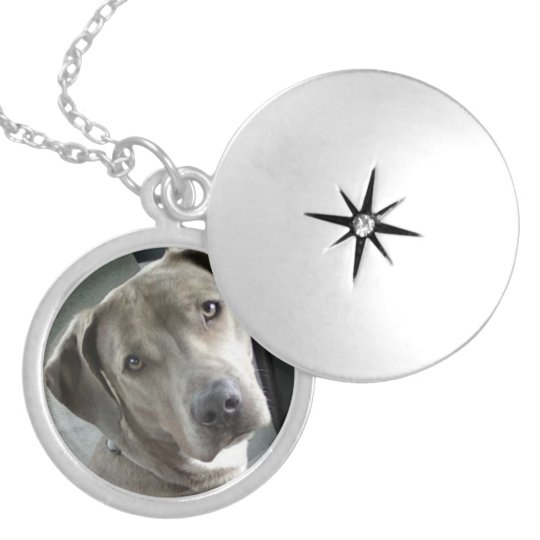 Custom Pet Memorial Photo Locket - Silver