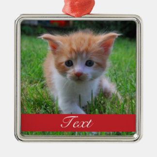 Custom Pet Photo and name or date Christmas Ornament