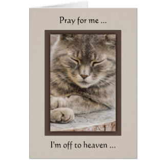 Custom Photo Cat Sympathy Card