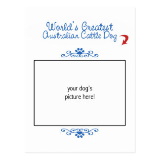Custom Photo Worlds Greatest Australian Cattle Dog Postcard