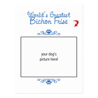 Custom Photo! Worlds Greatest Bichon Frise Post Card