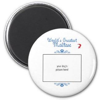 Custom Photo! Worlds Greatest Maltese Magnet
