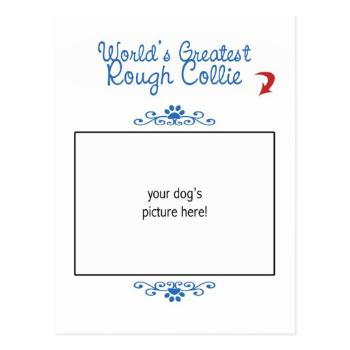 Custom Photo! Worlds Greatest Rough Collie Post Cards