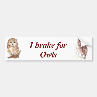 Custom Watercolor Owl, Bird, Nature, Wildlife Bumper Sticker
