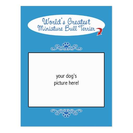 Custom Worlds Greatest Miniature Bull Terrier Post Cards