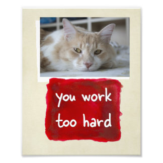 Custom You Work Too Hard Cat Photo Print