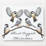 Customisable Black Capped Chickadees Mousepad