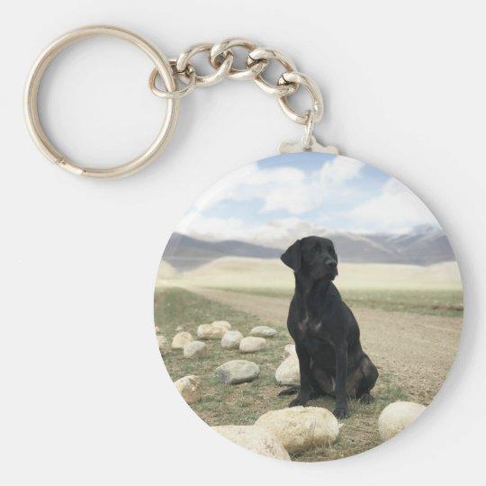 Customisable Black Labrador Retriever Key Ring