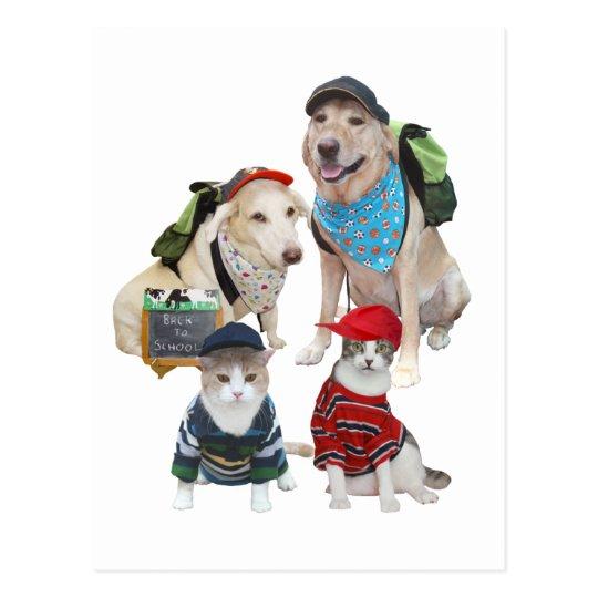 Customisable Cute Pets Postcard