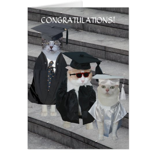 Customisable Funny Cats/Kitties Graduation Card