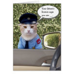 Customisable Funny Officer Cat Birthday Greeting Card