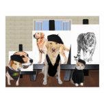 Customisable Funny Pet Art Class Postcard