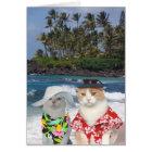 Customisable Funny Surfer Cats/Kitties Anniversary Card