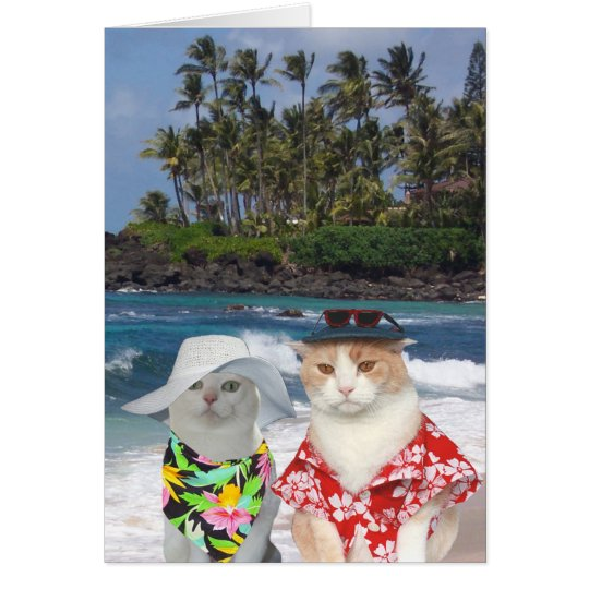 Customisable Funny Surfer Cats/Kitties Anniversary Card