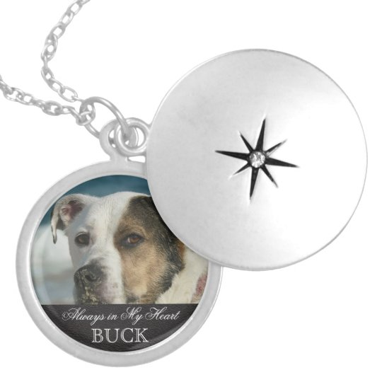 Customisable Pet Memorial Photo Keepsake Locket Necklace