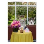 Customisable Pretty Cat Female Photobomb Birthday