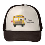 Customisable School Bus