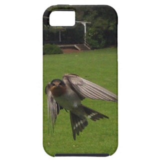 Customise Product iPhone 5 Covers