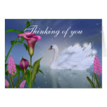 Customise this Beautiful Swan Greeting Card