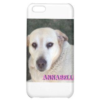 Customised iPhone 5C Cases