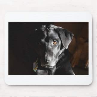 Customizable Black Labrador Retriever Mouse Mat