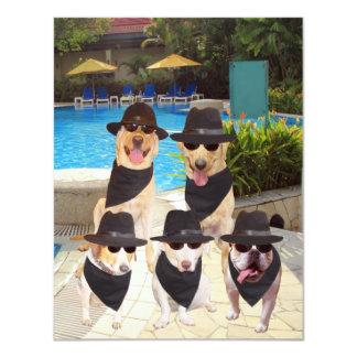 Customizable Funny Blues Dogs/Lab Invite