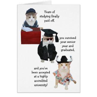 Customizable Funny Cat High School Graduation Greeting Card