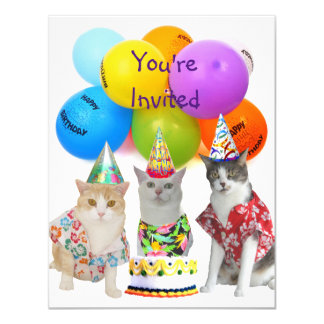 Customizable Funny Cats Birthday Party Invitation