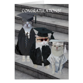 Customizable Funny Cats/Kitties Graduation Card