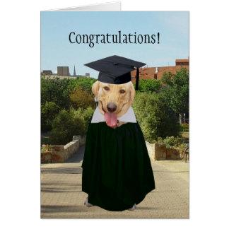 Customizable Funny Dog/Lab Graduation Greeting Card