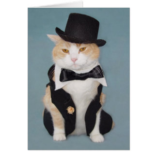 Customizable Funny Formal Cat Kitty Greeting Card