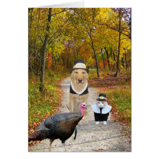 Customizable Funny Thanksgiving Greeting Card