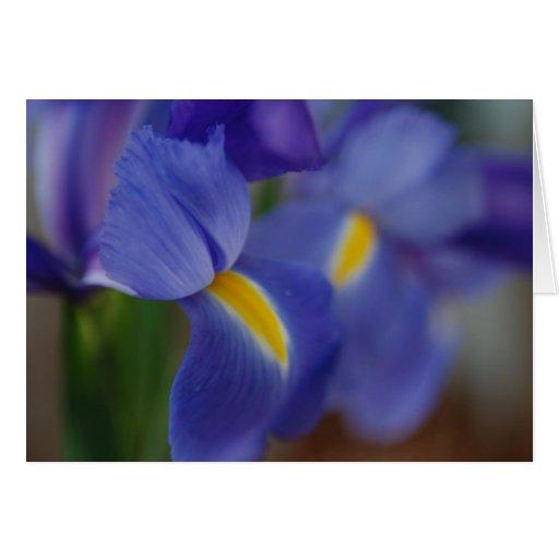 Customizable Iris Notecard Greeting Cards