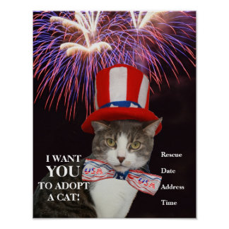 Customizable July 4th Cat Adoption Poster
