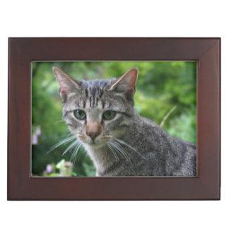 Customizable Keepsake Box Pets Memory Boxes