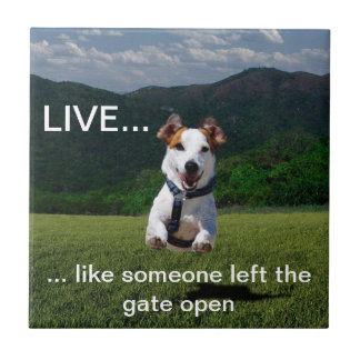 "Customizable ""Live Like Someone..."" Tile"