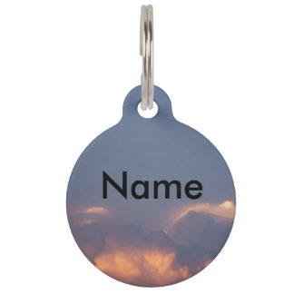 Customizable Name, Phone, Street, City, Pet Tag