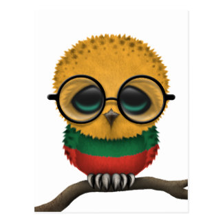 Customizable Nerdy Lithuanian Baby Owl Chic Postcard