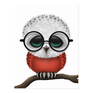 Customizable Nerdy Polish Baby Owl Chic Postcard