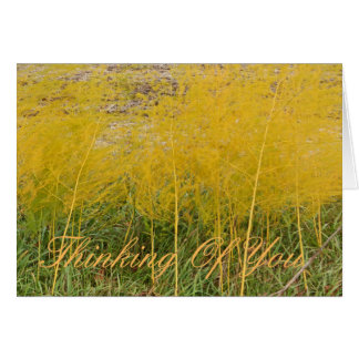 Customizable notecard/Thinking Of You/yellow, Note Card