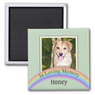 Customizable Photo Pet Memorial (Green) Square Magnet