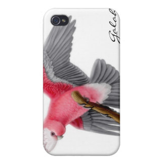 Customizable Pink Galah Cockatoo Speck Case Cases For iPhone 4