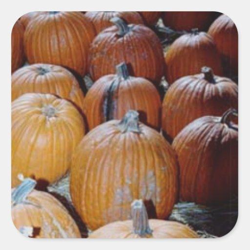 Customizable Pumpkin Patch Sticker