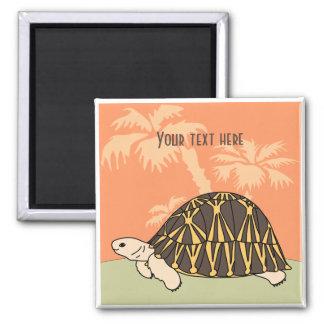 Customizable Radiated Tortoise Magnet 3