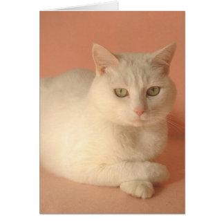 Customizable Valentine Cats Greeting Card