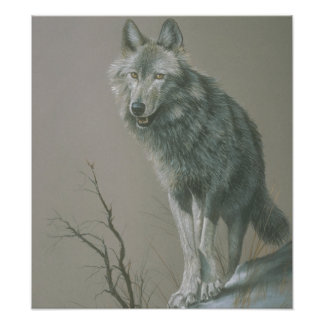 Customizable Wolf Art Poster Photograph
