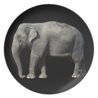 Customize Elephant Plate
