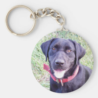 customize pet pic key chain