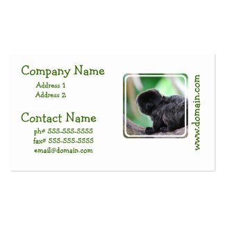 Customize Product Pack Of Standard Business Cards